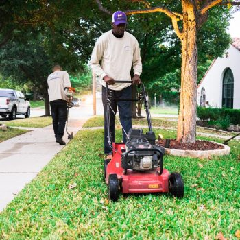 fort worth lawn services